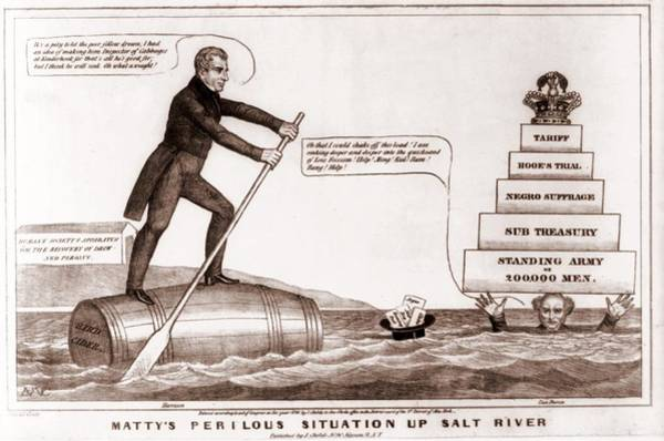 Whig Photograph - Cartoon Of The Presidential Election by Everett