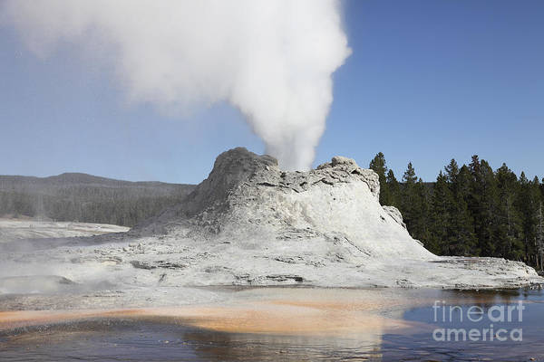 Yellowstone Caldera Photograph - Castle Geyser Steam Phase, Upper Geyser by Richard Roscoe
