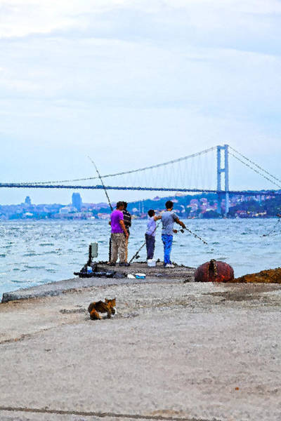 Angling Art Photograph - Cat And Fsherman  by Kantilal Patel