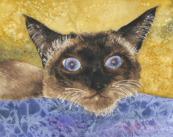 Siamese Cat Painting - Cat Eyes by Anne Gifford