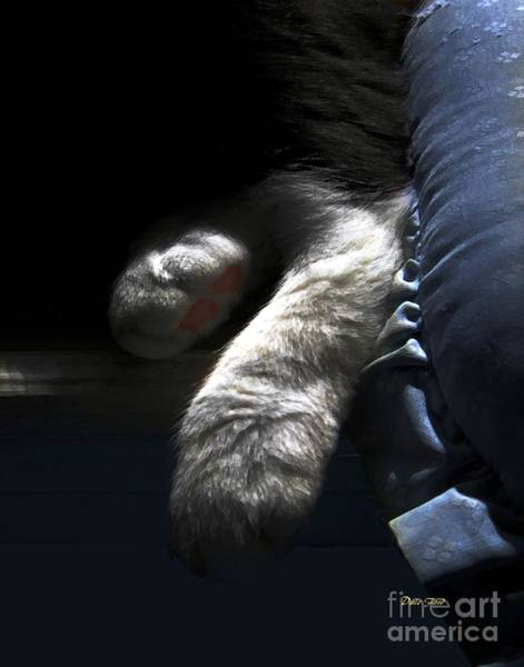 Digital Art - Cat Feet by Dale   Ford