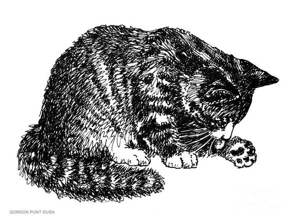 Drawing - Cat-tabby-posters-1 by Gordon Punt