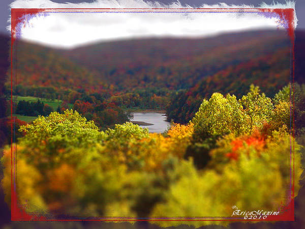 Photograph - Catskill Fall by Ericamaxine Price