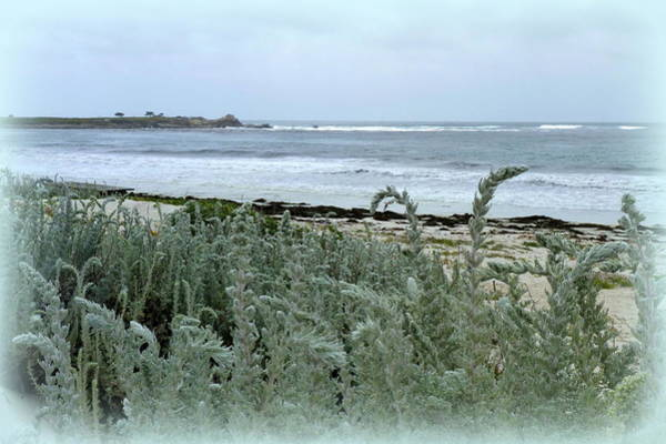 Analogous Color Photograph - Celadon Seascape by Carla Parris