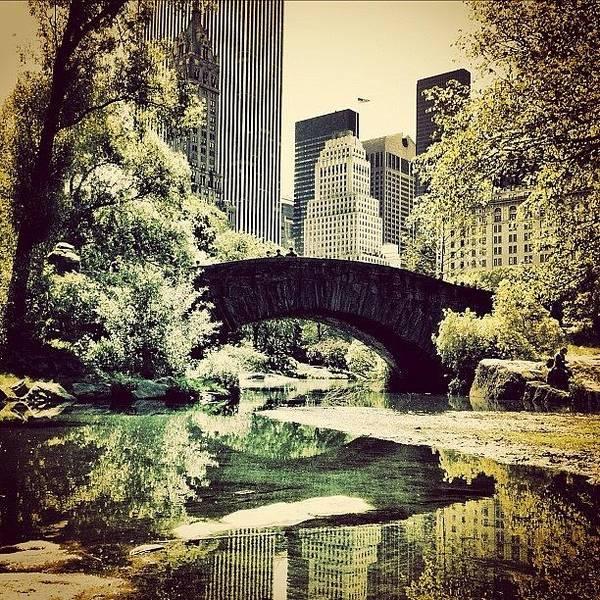 Road Photograph - Central Park Bridge. #centralpark #nyc by Luke Kingma