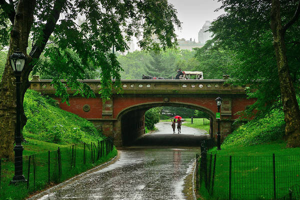 Photograph - Central Park In The Rain by Greg Norrell