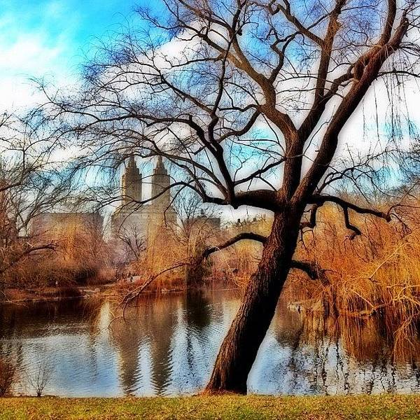 Skyline Wall Art - Photograph - #centralpark #park #outdoor #nature #ny by Joel Lopez