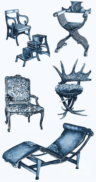 Antlers Drawing - Chair Poster In Blue by Adendorff Design