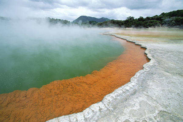 Photograph - Champagne Pool, Waiotapu Thermal by Konrad Wothe