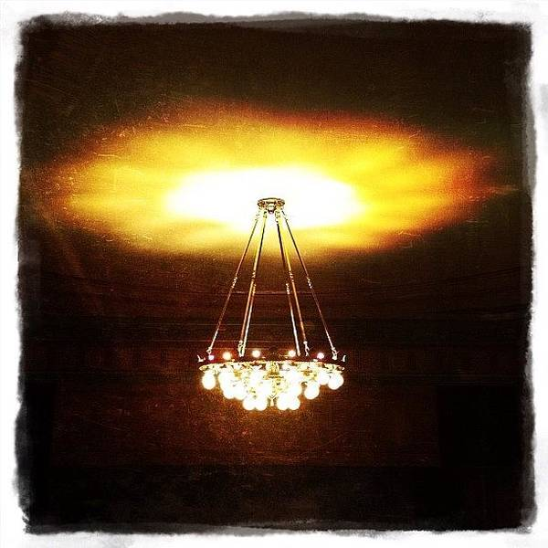Light Photograph - Chandelier by Natasha Marco