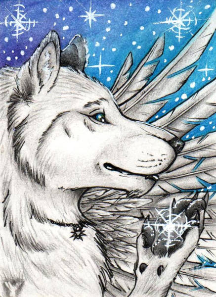 Furry Drawing - Changer For C-t-elder Aceo by Ylang Ylang