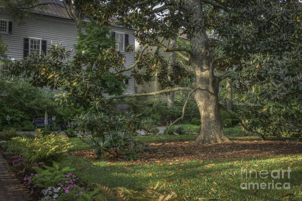 Photograph - Charleston Private Garden II by David Waldrop