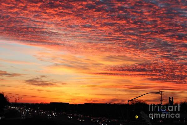 Wall Art - Photograph - Chasing The Sun by Amy Delaine