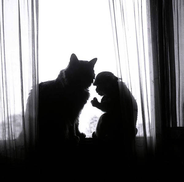 Photograph - Chat by Emanuel Tanjala