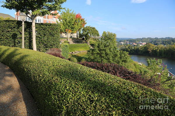 Photograph - Chattanooga Viewpoint by Carol Groenen