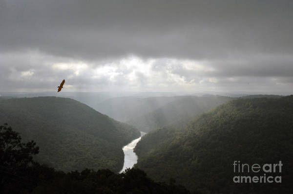 Photograph - Cheat River Gorge With Streaming Sunlight by Dan Friend