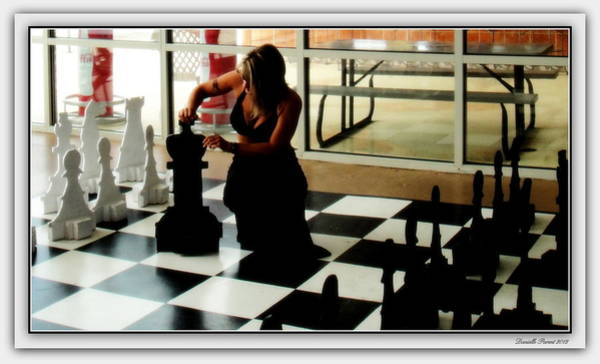 Photograph - Checkmate by Danielle  Parent