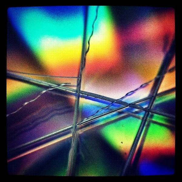 Macro Photograph - Chem Trails? by Dave Edens