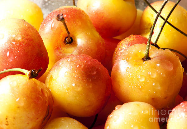 Wall Art - Photograph - Cherries by Blink Images
