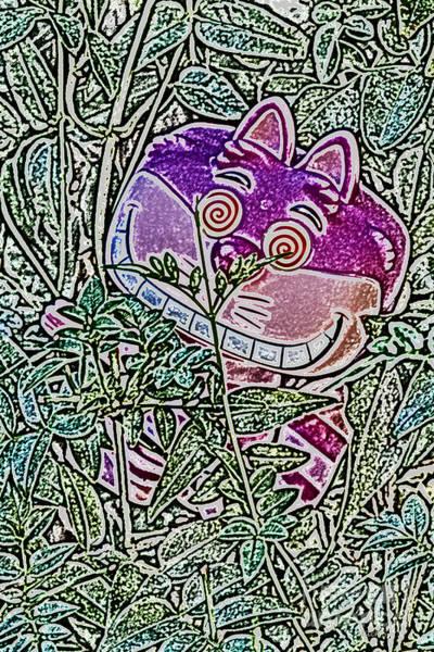 Alice In Wonderland Photograph - Cheshire Cat by Mitch Shindelbower