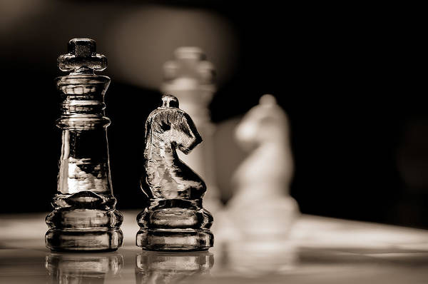 Chess Knight Wall Art - Photograph - Chess King And Knight by Lori Coleman