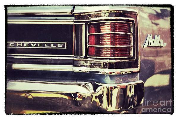 Photograph - Chevelle by Traci Cottingham