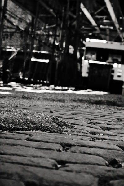 Photograph - Chicago Cobblestone by Laura Kinker