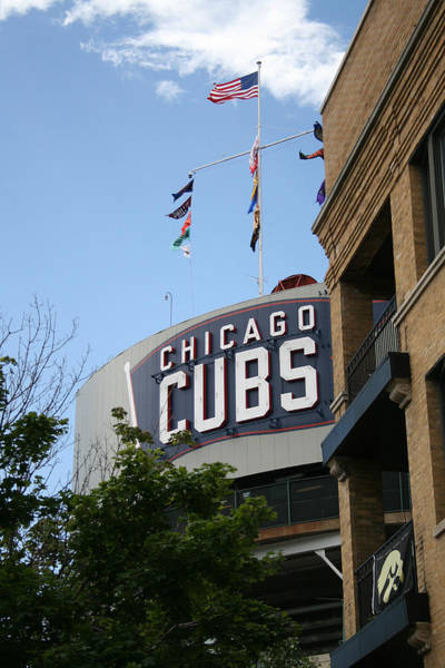 Chicago Cubs Art Print