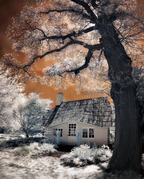 Photograph - Children's Cottage by Steve Zimic