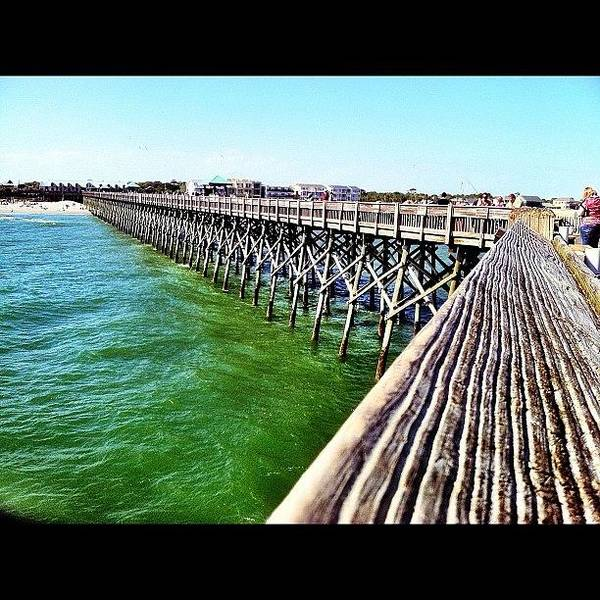 Draw Wall Art - Photograph - Chilling At The Pier by Drew Castelhano