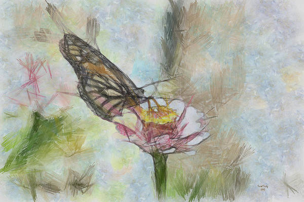 Photograph - Chinese Butterfly by Trish Tritz