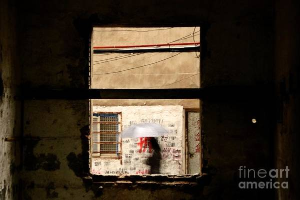 Wall Art - Photograph - Chinese Whispers by Dean Harte