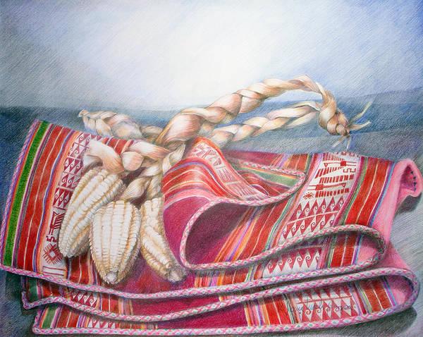 Indian Corn Drawing - Choclos Envueltos En Aguayo by Sonia Tudela
