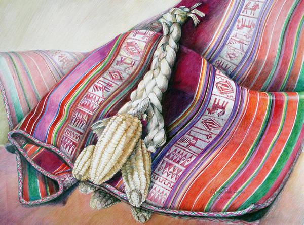 Indian Corn Drawing - Choclos Sobre Aguayo by Sonia Tudela
