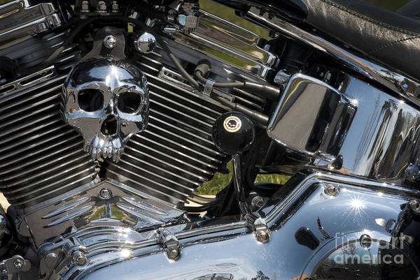 Photograph - Chopper Skull by Paul W Faust -  Impressions of Light