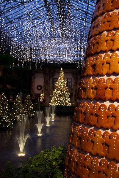 Christmas At Longwood Gardens Photograph By Heidi Reyher