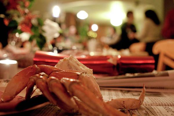 Photograph - Christmas Crab by Lorraine Devon Wilke