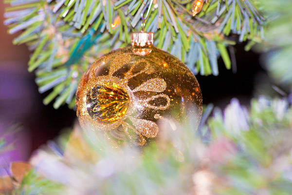 Wall Art - Photograph - Christmas Ornament by Betsy Knapp