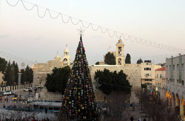 Manger Photograph - Christmas Tree In Manger Square Bethlehem by Munir Alawi