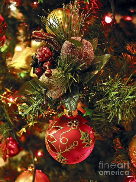 Photograph - Christmas Tree Ornaments by Elena Elisseeva