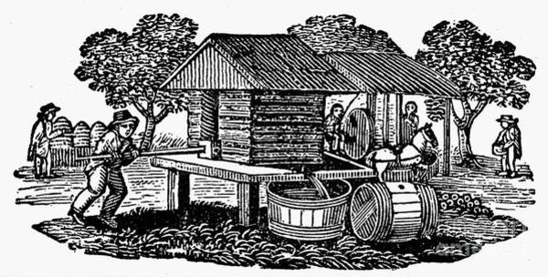 Photograph - Cider Mill, 19th Century by Granger
