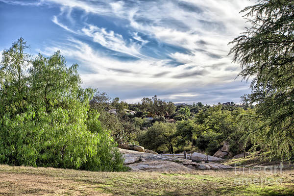 Photograph - Cirrus Clouds With Trees by Peter Dyke