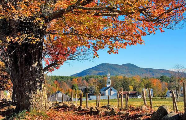 Photograph - Classic Tamworth Trees Autumn by Larry Landolfi