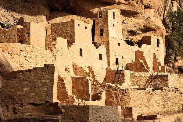 Photograph - Cliff Palace by Adam Pender