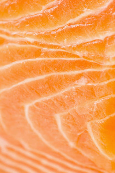 Raw Meat Photograph - Close Up Of Salmon Meat, Studio Shot by Jamie Grill