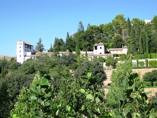 Photograph - Close Up View Of Alhambra And Gardens Granada Spain by John Shiron