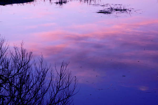 Photograph - Clouds In The Water by Tom Singleton