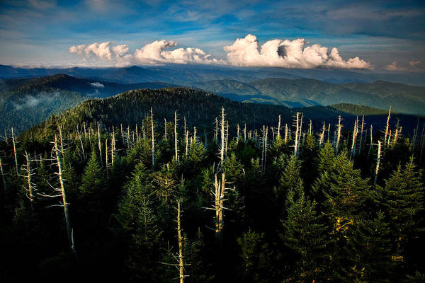 Photograph - Clouds Over Mt Leconte Near The Great Smoky Mountains by Steven Llorca
