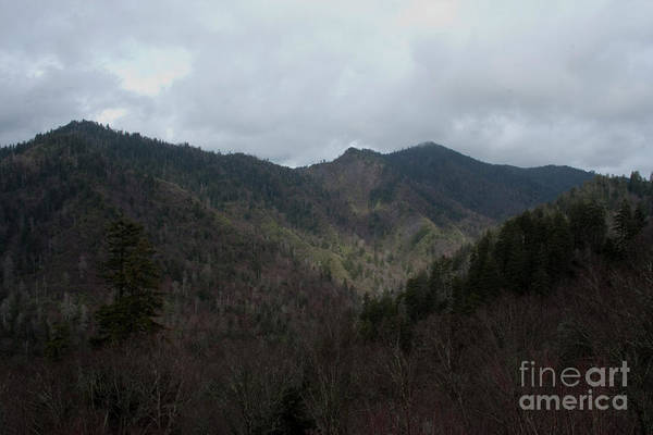 Photograph - Cloudy Mountain by Michael Waters