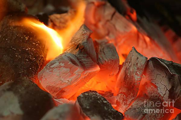 Flammable Wall Art - Photograph - Coal Fire by Francisco Leitao